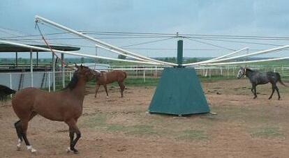 Horsewalkers